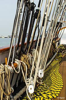 Allen Sheffield - Ship Ropes