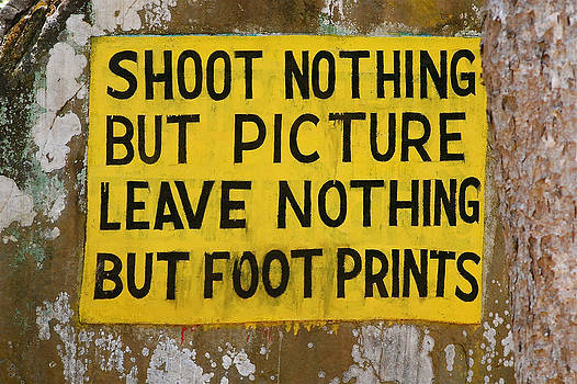 Shoot Nothing But Picture by Louise Morgan