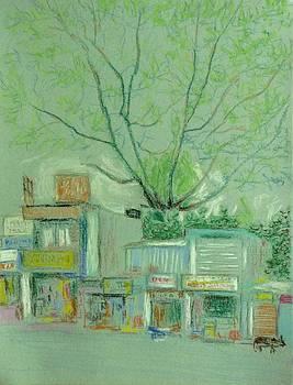 Shops across the road by Rashid Hamza