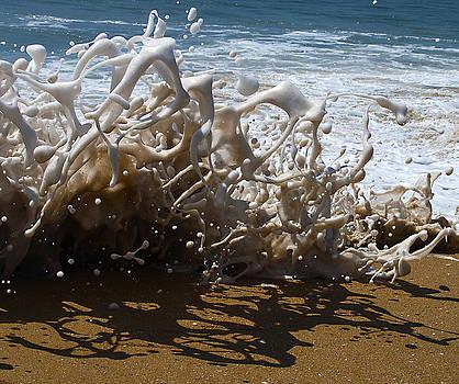 Shorebreak - The Wedge by Joe Schofield