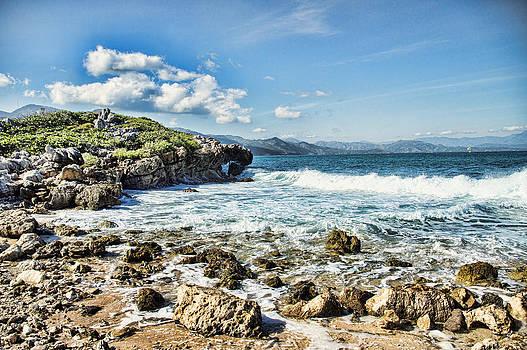 Shoreline by Kathy Jennings