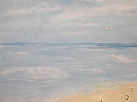 Shoreline by Michelle Treanor
