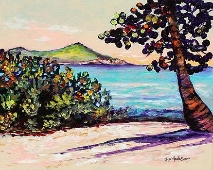 Shores of St. Thomas by Eve  Wheeler