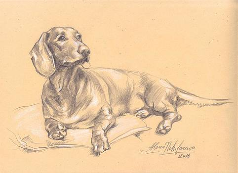 Short-haired dachshund on a pillow by Alena Nikifarava