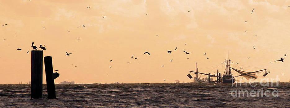 Shrimp Boat and Pelicans by Luana K Perez