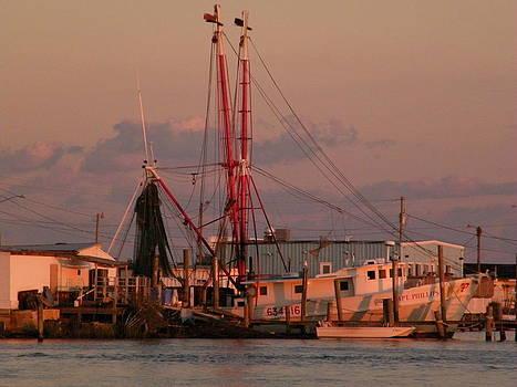 Shrimpboat at sunset by Matthew Kay