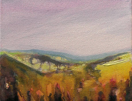 Shropshire Hills 4 by Paul Mitchell