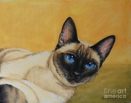 Siamese by Ace Robst Jr