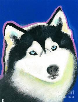 Siberian Husky by Aaron Koster