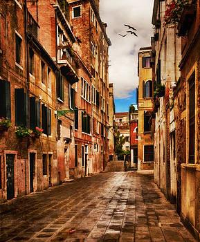 Side Street in Venice by Mick Burkey