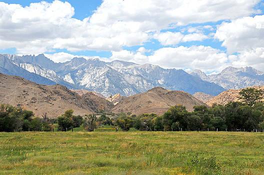 Sierra Nevada by Paul Van Baardwijk