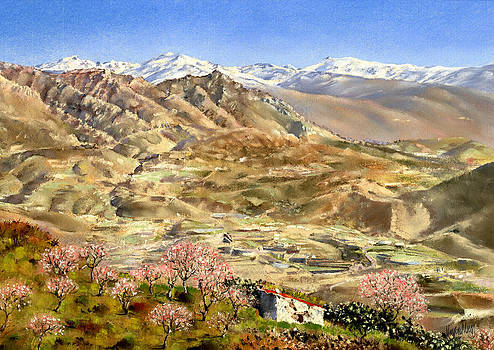 Sierra Nevada with Almond Blossom by Margaret Merry