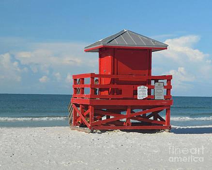 Siesta Key Beach 3 by Robert  Suggs