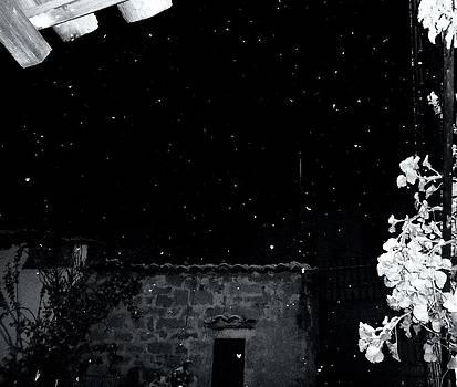 Silent Night by Donatella Muggianu