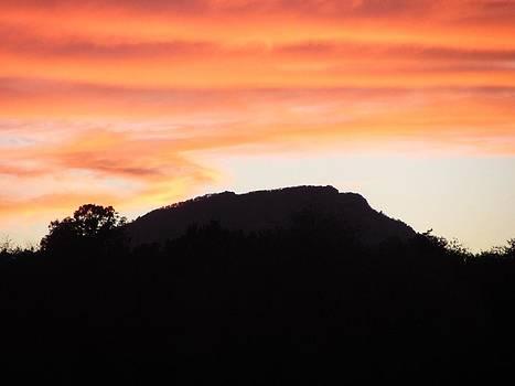 Silhouette Sunset by Christine Bradley