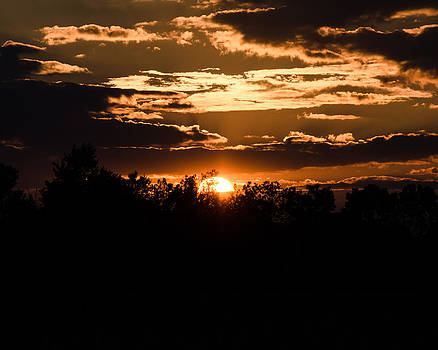 Silhouette Sunset  by Neil Todd