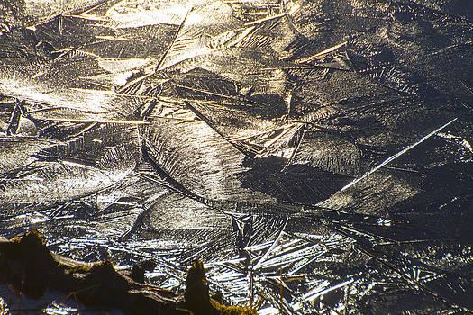Silver Ice by Daryl Hanauer