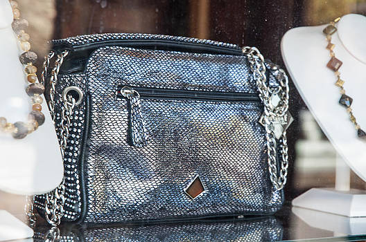 Silver Purse by Allen Carroll