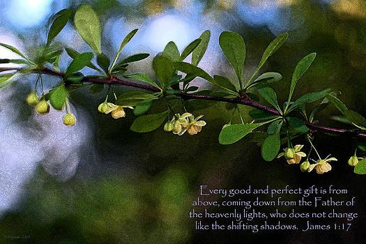 Simple Abundance by Kim Hymes