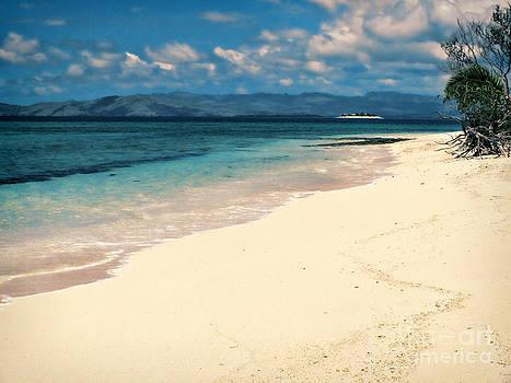 Simply Paradise by Karen Lewis