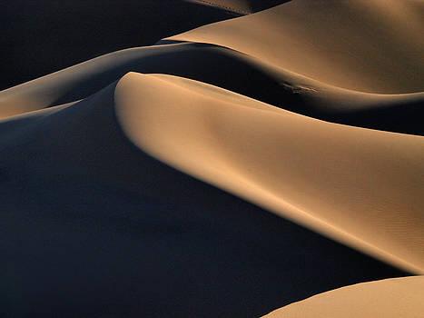 Sinuous Dunes. Death Valley California.  by Joe Schofield