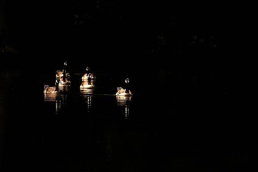 Karol  Livote - Six Geese A Swimming