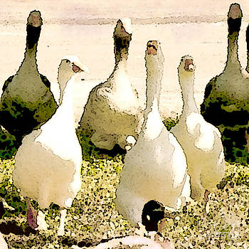 Artist and Photographer Laura Wrede - Six Geese and a Duck