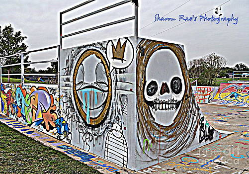 Skate Park by Sharon Farris