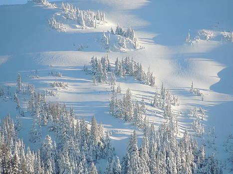 Ski by Karen Horn
