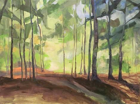 Skidmore Northwoods by Terri Messinger