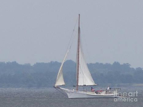 Skipjack on the Bay  by Debbie Nester