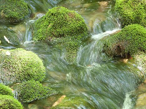 Skookumchuck Falls New Hampshire by Bucko Productions Photography
