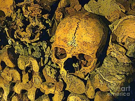 John Malone - Skull in Paris Catacombs