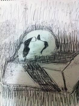 Skull on box by Khoa Luu