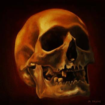 Skull Study by Michael Payne