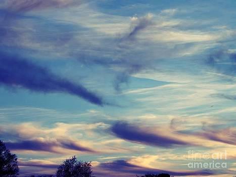 Sky 1 by Saska V