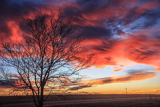 Sky Ablaze by Shirley Heier