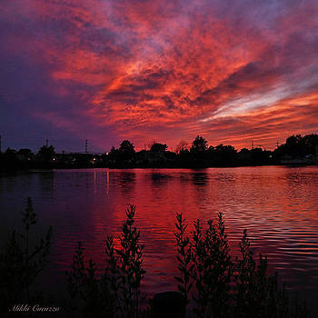 Sky on fire by Mikki Cucuzzo