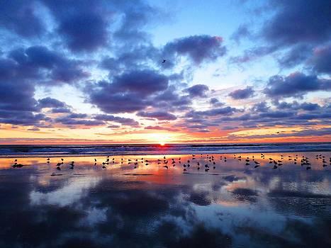 Sky Reflections by Julia Ivanovna Willhite