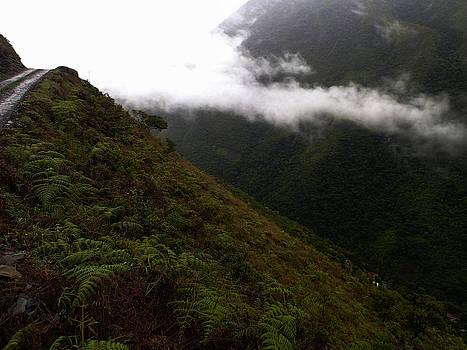 Sky Trails in Green by Tyler Lucas