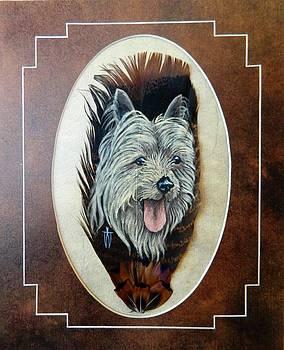 Sky yorkshire terrier by Joe Watkins