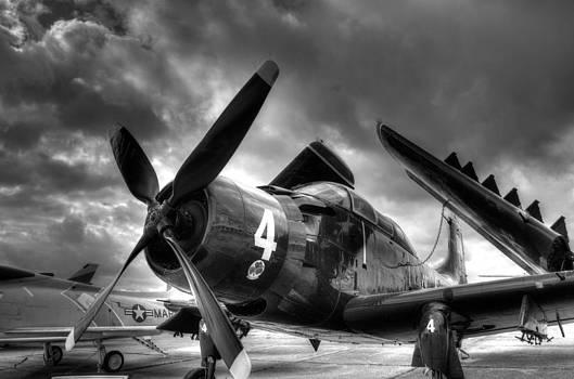 Skyraider by Bryan Davis