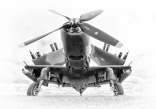 Skyraider by Jason Fortenbacher
