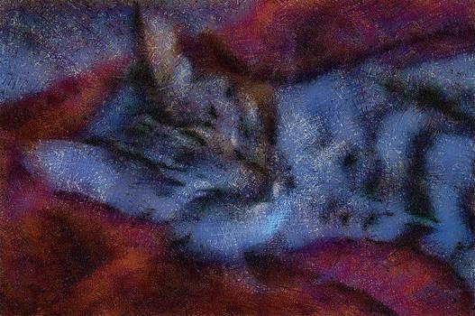 Sleepy Mister Cat by Natalia Corres