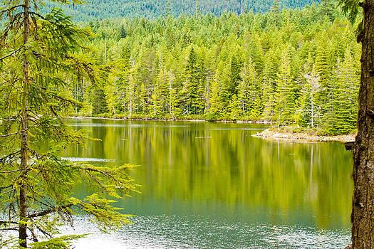 Sliammon Lake by Danielle Silveira