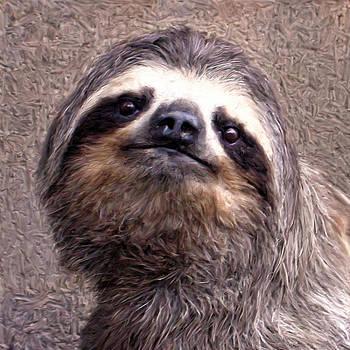 Dominic Piperata - Sloth