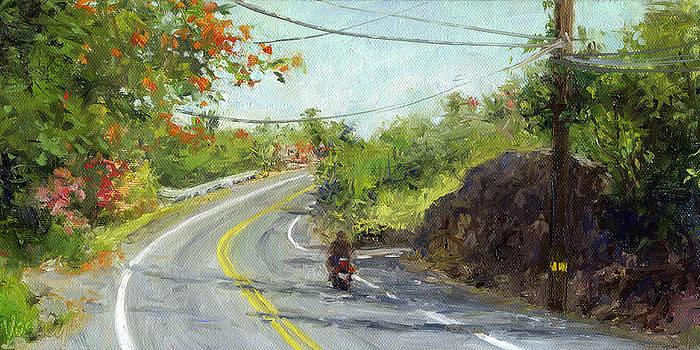 Stacy Vosberg - Slow Ride