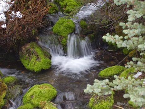Small Waterfalls by Yvette Pichette