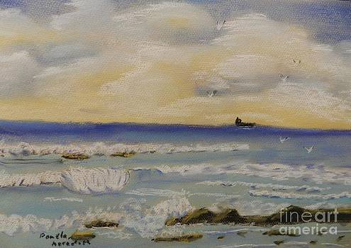 Small Waves by Pamela  Meredith