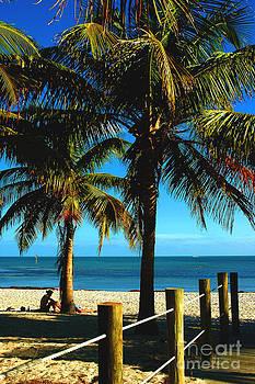 Susanne Van Hulst - Smathers Beach in Key West